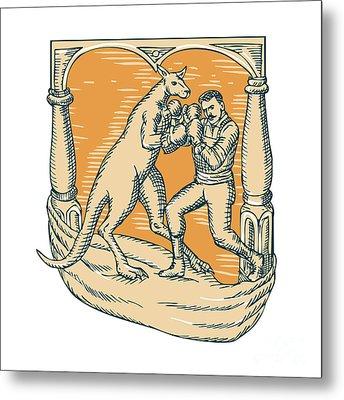 Kangaroo Boxing Man Etching Metal Print by Aloysius Patrimonio