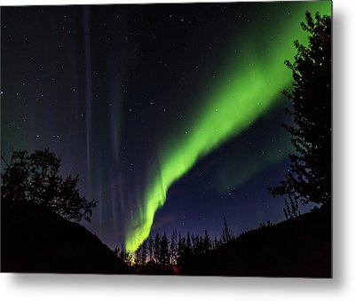 Kantishna Northern Lights In Denali National Park Metal Print by Brenda Jacobs