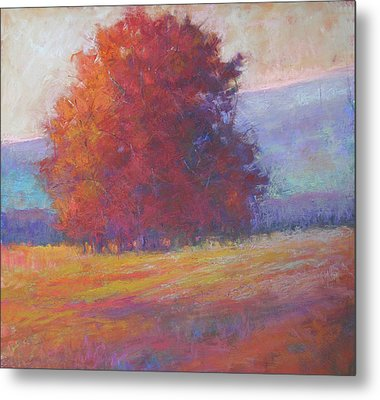 Keene Valley Metal Print