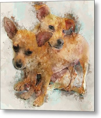 Keeping Each Other Warm - Chihuahua Puppies Watercolor Portrait Metal Print