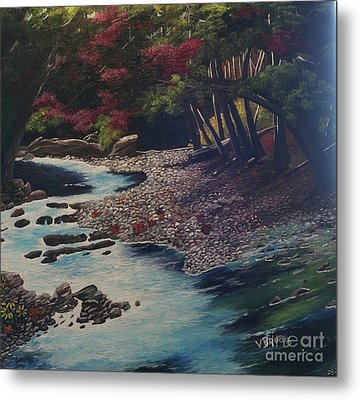 Kentucky   Creek Metal Print by Vickie Brooks