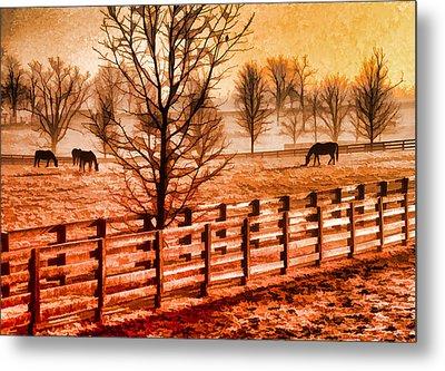 Kentucky Horse Farm  Metal Print by Dennis Cox WorldViews