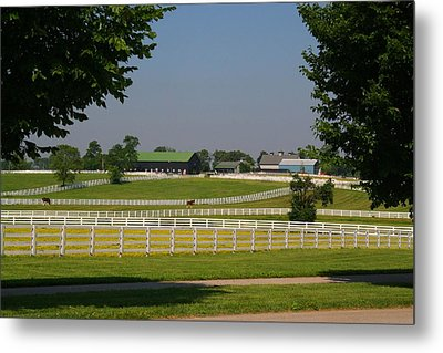 Kentucky Horse Park Metal Print by Kathryn Meyer