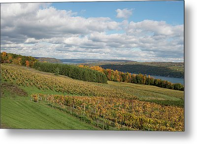 Metal Print featuring the photograph Keuka In Autumn by Joshua House