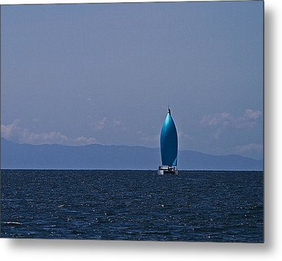 Kind Of Blue Metal Print by Ron Dubin