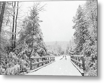 Metal Print featuring the photograph Kindness Is Like Snow by Lori Deiter