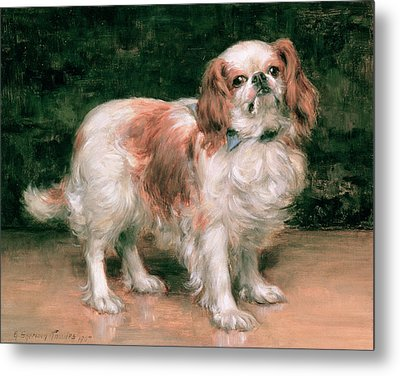 King Charles Spaniel Metal Print by George Sheridan Knowles