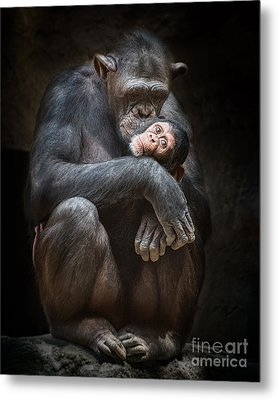 Kiss From Mom Metal Print