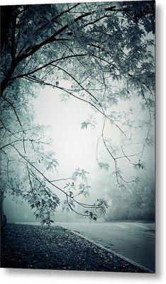 Kissed By Mist Metal Print by Maggie Terlecki