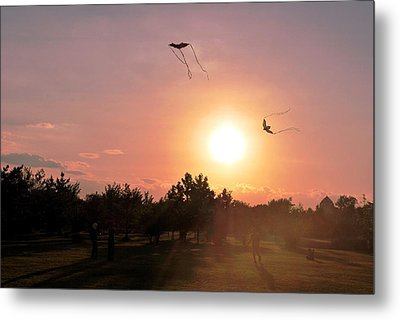 Kites Flying In Park Metal Print