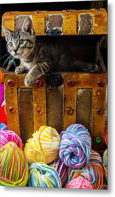Kitten Hiding In Treasure Box Metal Print