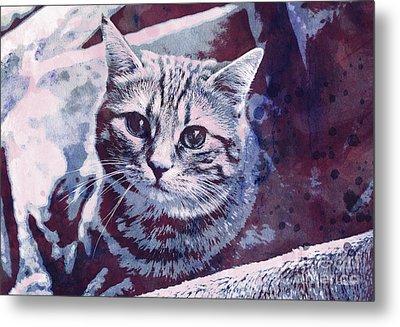 Kitty Cat Metal Print by Jutta Maria Pusl