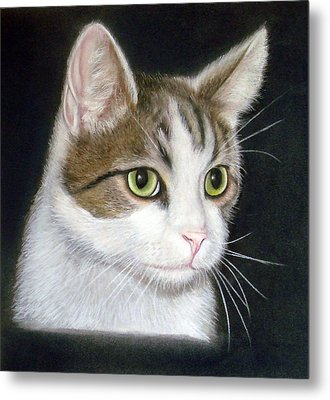 Kitty The Cat Metal Print by Mary Mayes
