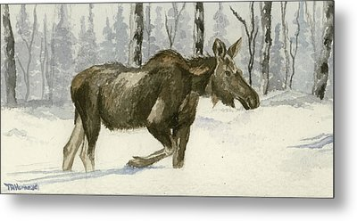 Knee Deep In Snow Metal Print by Tracey Hunnewell