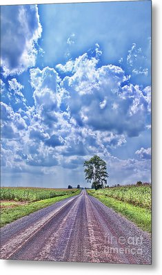 Knowing The Right Way Metal Print by Cathy  Beharriell