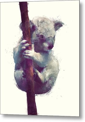 Koala Metal Print by Amy Hamilton