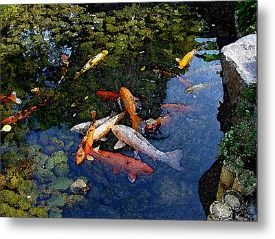 Koi - Dsc00016 Metal Print by Shirley Heyn