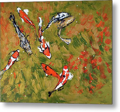 Koi 201746 Metal Print by Alyse Radenovic