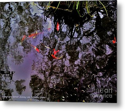 Koi Reflections Evening Metal Print by Jamey Balester