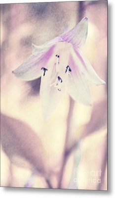 La Belleza Metal Print by Angela Doelling AD DESIGN Photo and PhotoArt
