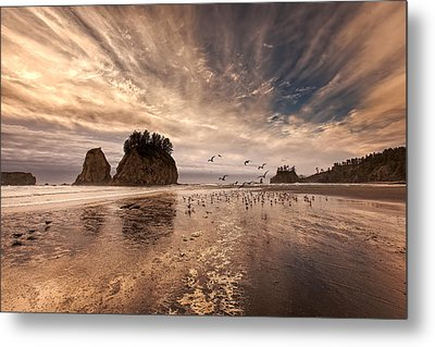 La Push Sunset Metal Print by Ian Good