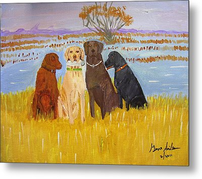 Lab Dogs Metal Print