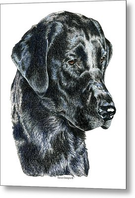 Labrador Retriever, Black Lab Metal Print