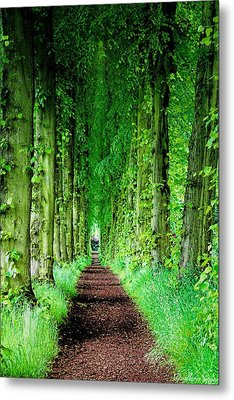 Lady Lucy's Walk Metal Print by Wallaroo Images
