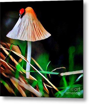 Ladybug On Mushroom Metal Print by Amy Cicconi