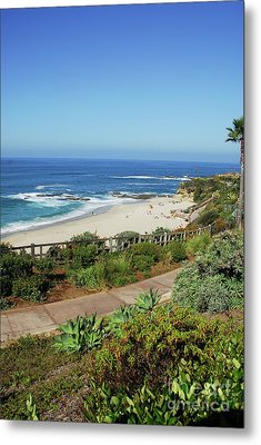 Laguna Afternoon Metal Print by Timothy OLeary
