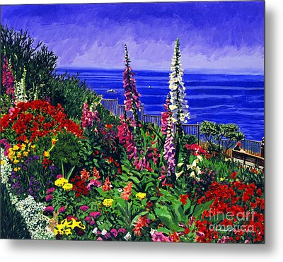 Laguna Niguel Garden Metal Print by David Lloyd Glover