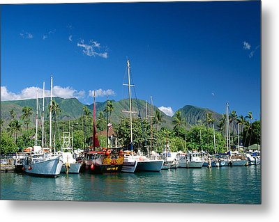 Lahaina Harbor - Maui Metal Print by William Waterfall - Printscapes