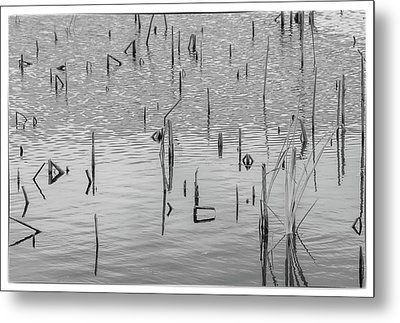 Metal Print featuring the photograph Lake Abstract by Carolyn Dalessandro