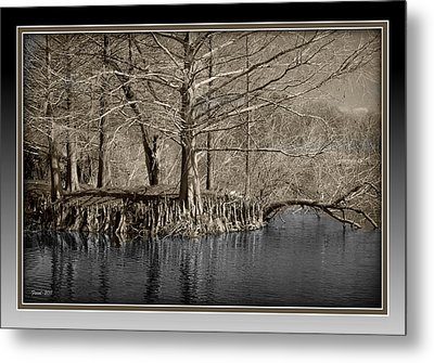 Lake Alice Metal Print by Farol Tomson