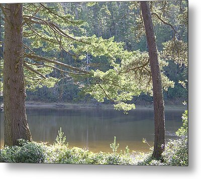 Metal Print featuring the photograph Lake Chamberlin by Angi Parks