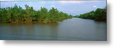 Lake Fausse Pointe State Park, Louisiana Metal Print by Panoramic Images
