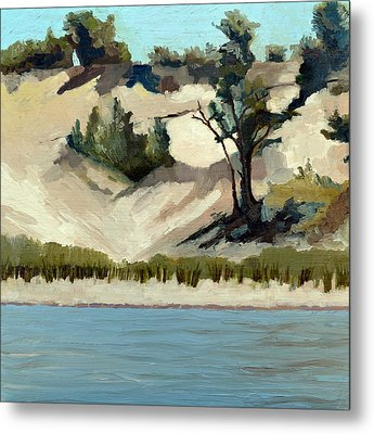 Lake Michigan Dune With Trees And Beach Grass Metal Print by Michelle Calkins