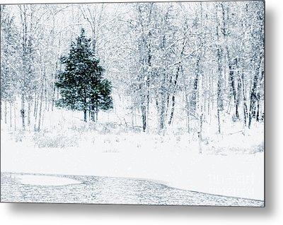 Lake Murray Christmas Tree Landscape Metal Print by Tamyra Ayles