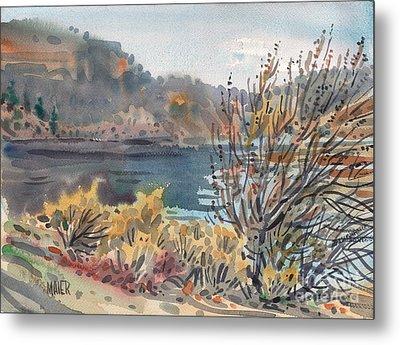 Lake Roosevelt Metal Print