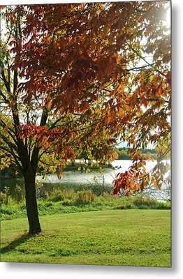 Metal Print featuring the photograph Lake Shore Afternoon by Michael Flood
