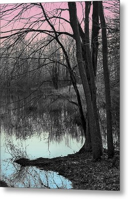 Metal Print featuring the digital art Lake Sunset by Terry Cork