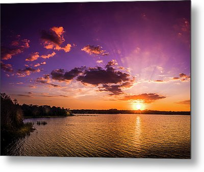 Lake Tarpon Sunset Metal Print