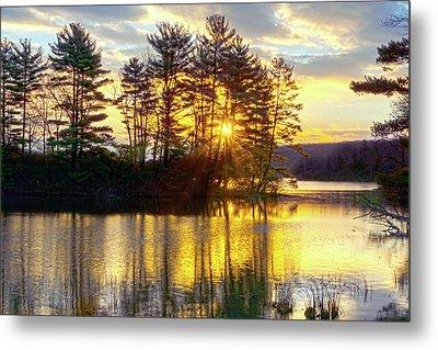 Lake Tiorati Golden Sunrise Metal Print
