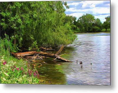 Lakeside Blossoms Metal Print