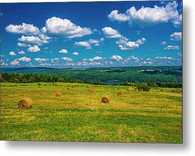 Metal Print featuring the photograph Lakeside Hayfield II by Steven Ainsworth
