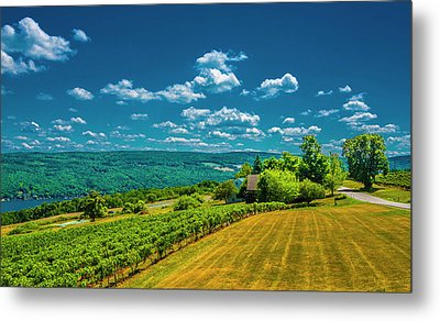 Metal Print featuring the photograph Lakeside Vineyard II by Steven Ainsworth