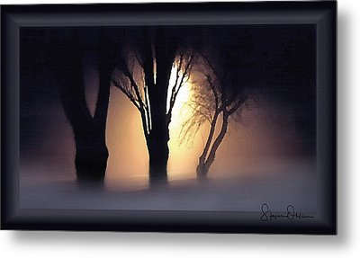 Lamplit Silhouetted Trees In Fog - Signed Limited Edition Metal Print by Steve Ohlsen