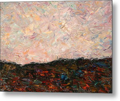 Land And Sky Metal Print by James W Johnson