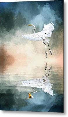 Landing At Dawn Metal Print by Cyndy Doty