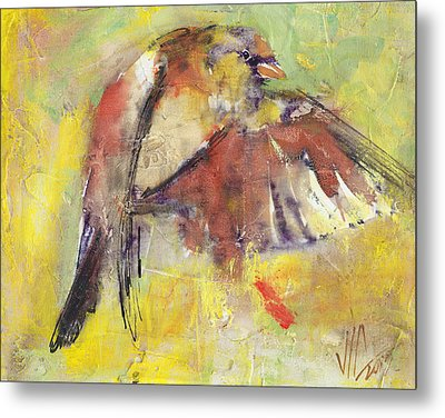 Landing On The Rainbow Metal Print by Vali Irina Ciobanu
